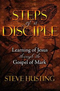 Steps of a Disciple opening screen